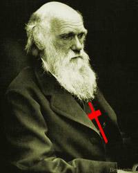 Holy Darwin